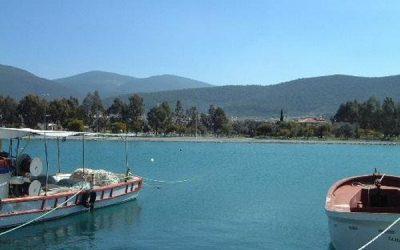 Villas For Sale in Akbuk Turkey